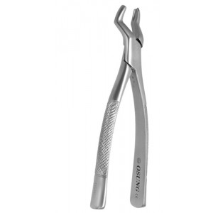 Dental Extraction Forcep UPPER MOLARS, FX53L