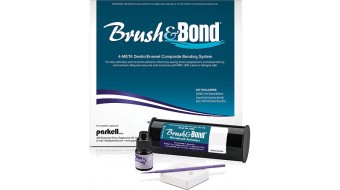 Brush & Bond